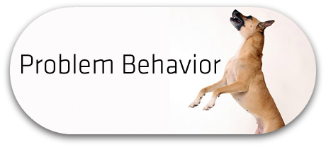 Problem Behavior Button_FINAL