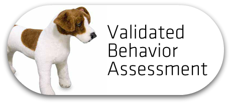 Validated Behavior Assessment Button_FINAL
